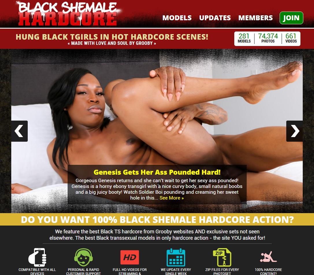 Blackshemalehardcore Siterip 75 Hardcore Videos 27 85 Gb