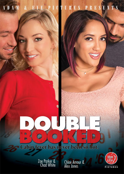 Double Booked (2017/WEBRip/SD)