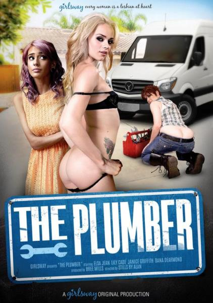 The Plumber (2017/DVDRip)