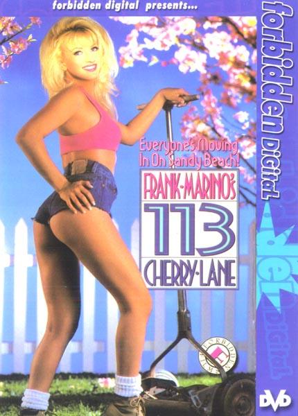 113 Cherry Lane