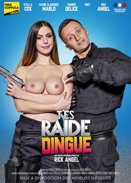 Tes Raide Dingue (2017/WEBRip/HD)