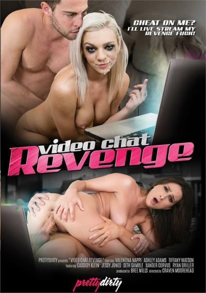 Video Chat Revenge (2017/WEBRip/SD)