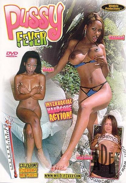 Pussy Fever (2001/WEBRip/SD)