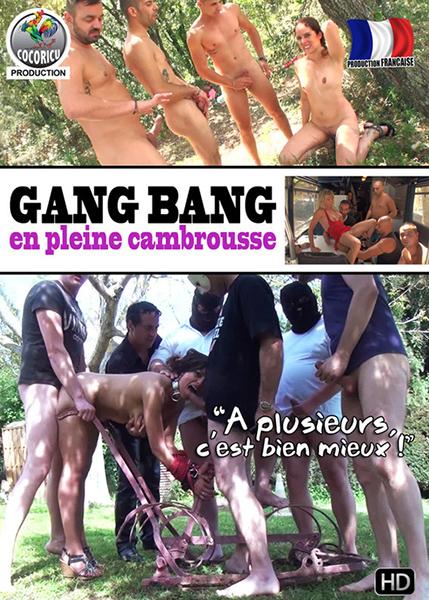 Gang Bang en pleine cambrousse (2015/WEBRip/HD)