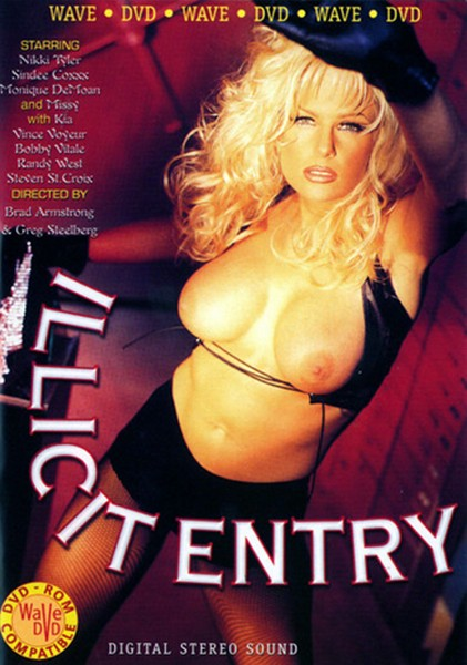 Illicit Entry (1996/DVD5)