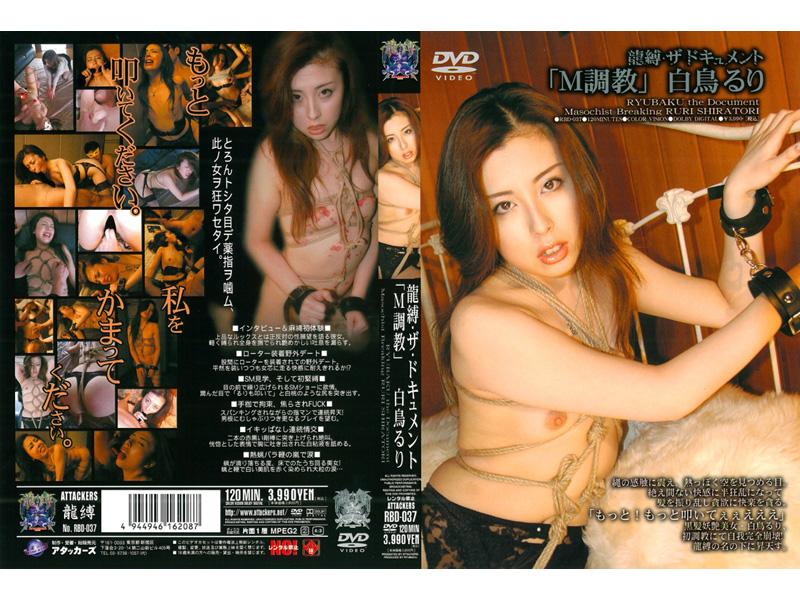 RBD-037 ルリスワン Shiratori Ruri「TortoraのM」・ドラゴン・テヨン文書テッド Bondage  拷問