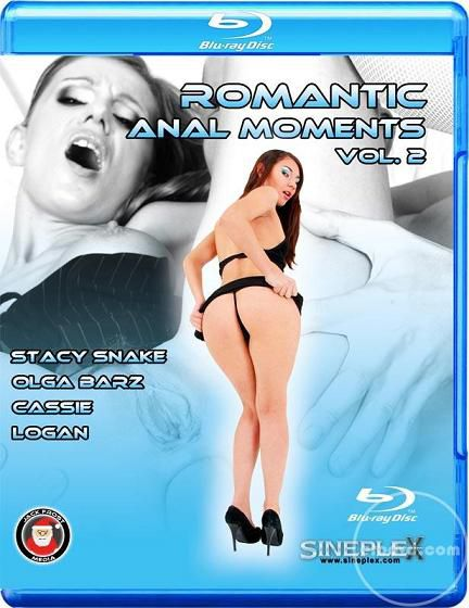 Romantic Anal Moments 2