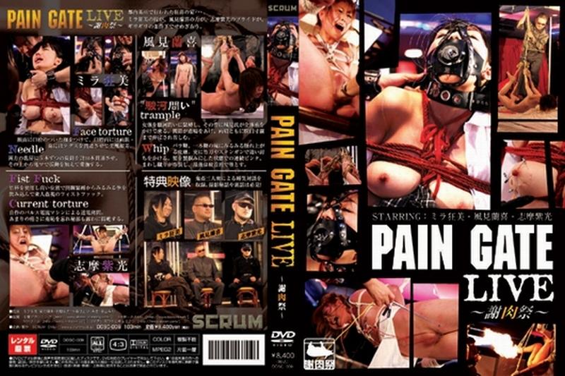DDSC-009 B PAIN GATE 謝肉祭s e Hook 鼻フック 拷問・ピアッシング 103分
