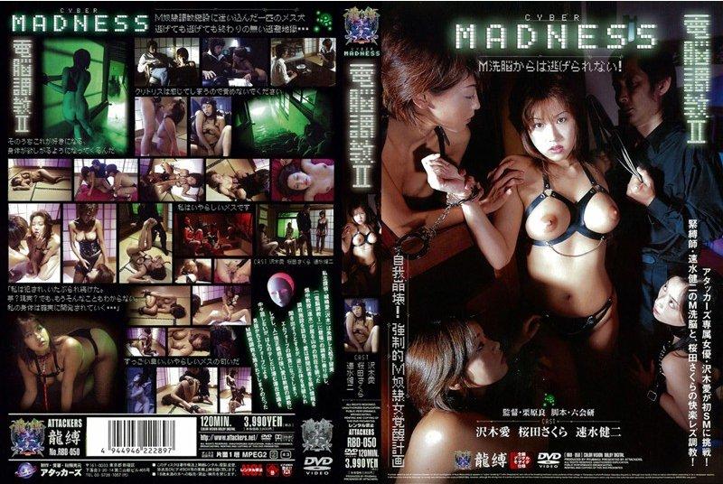 RBD-050 電脳調教 2 Schoolgirls その他SM 2006/10/28