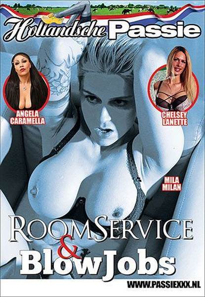 Room Service And Blowjobs (2017/WEBRip/SD)