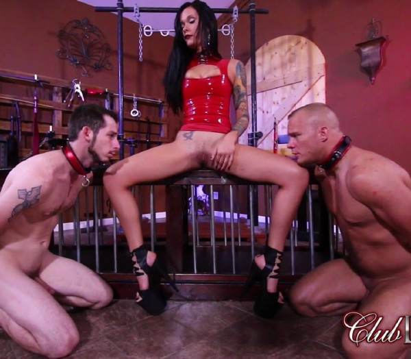 Mia Marley - Pussy Whipped by Mistress Maria (2017/ClubDom/1080p)