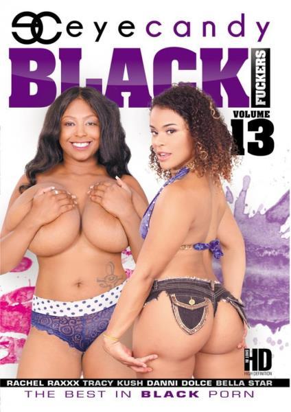 Black Fuckers 13 (2017/DVDRip)