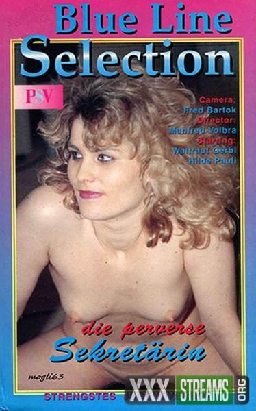 Die perverse Sekretarin (1995/VHSRip)