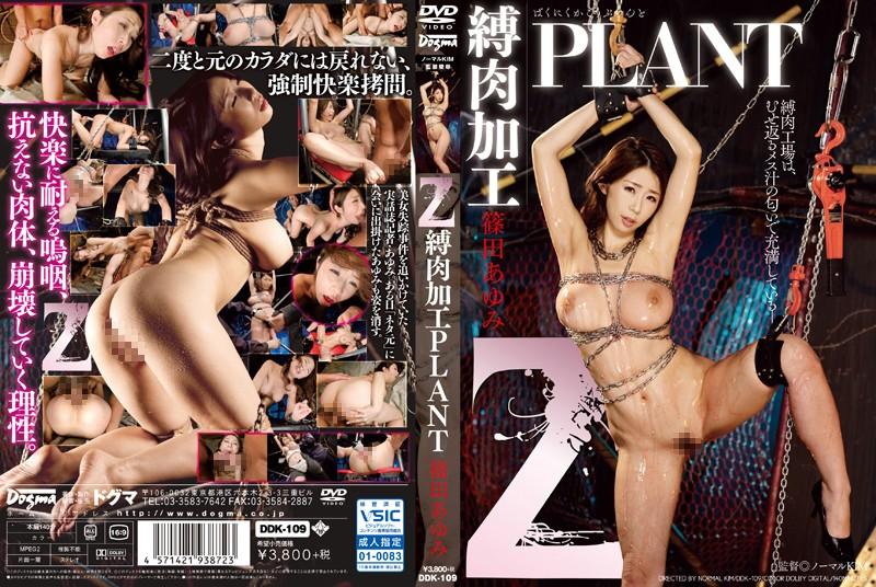 DDK-109 Z 縛肉加工PLANT 篠田あゆみ Restraint 巨乳 拘束 Shinoda Ayumi