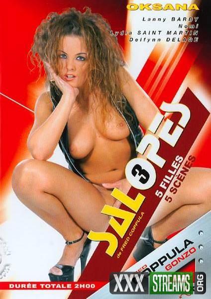 Salopes 3 (2006/DVDRip)