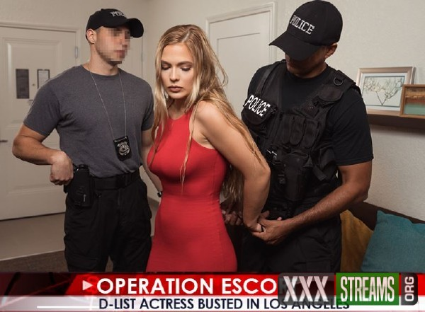 Sloan Harper - D-List Actress Busted In Los Angeles (2017/OperationEscort/1080p)