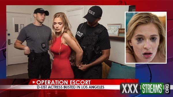 Sloan Harper - D-List Actress Busted In Los Angeles (2017/OperationEscort/SD)