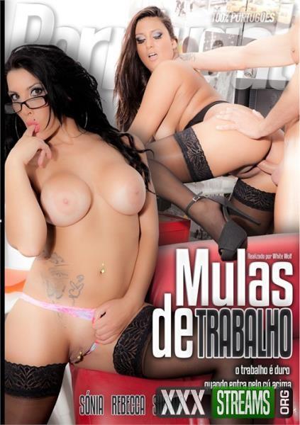 Mulas De Trabalho (2014/DVDRip)