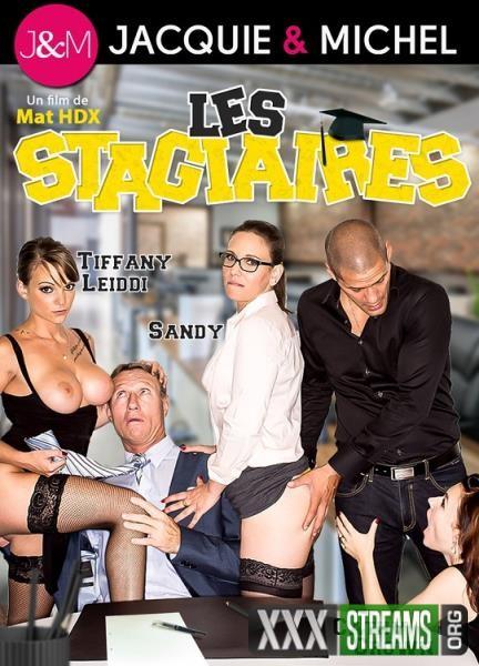 Les Stagiaires (2017/WEBRip/FullHD)