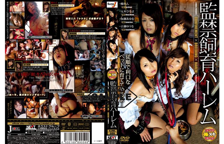 SJML-059 監禁飼育ハーレム Rape 90分