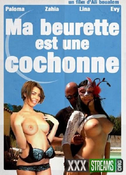 Ma Beurette Est Une Cochonne (2017/WEBRip/HD)