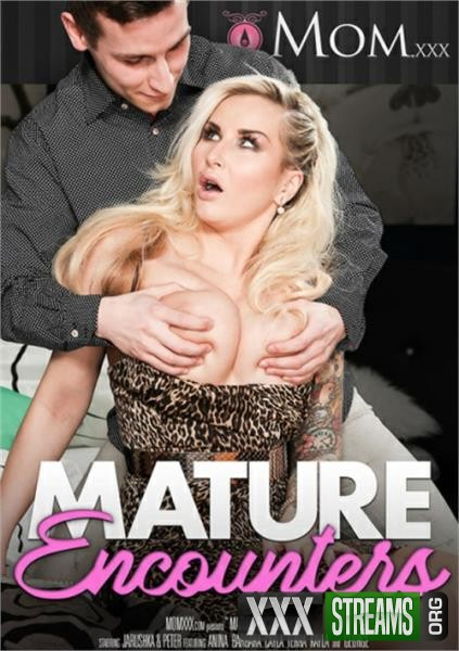 Mature Encounters (2017/WEBRip/SD)