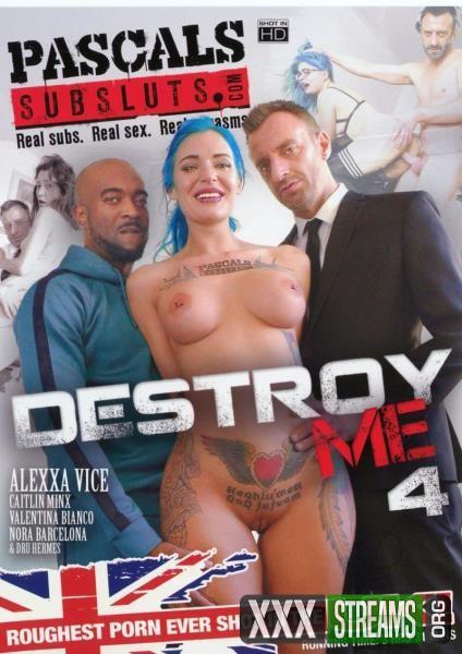 Destroy Me 4 (2017/WEBRip/SD)