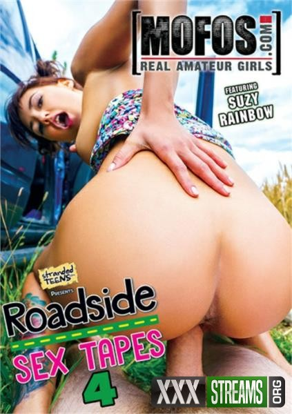 Roadside Sex Tapes 4 (2017/WEBRip/SD)