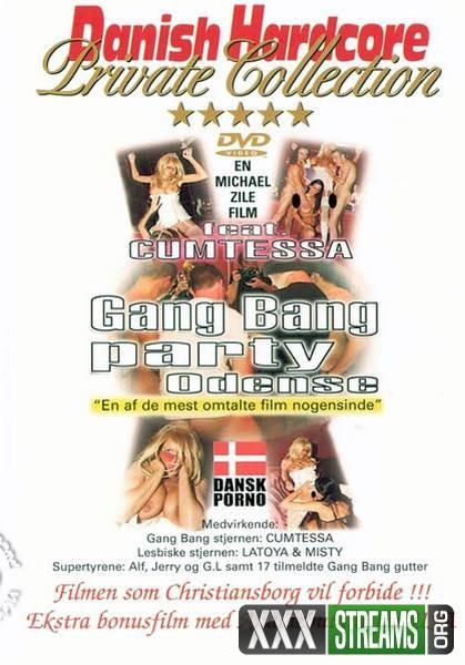 Gang Bang Party Odense (2002/DVDRip)