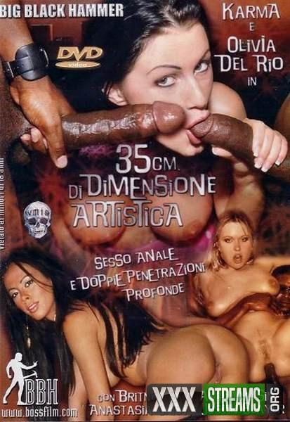35 Cm Di Dimensione Artistica (2005/DVDRip)