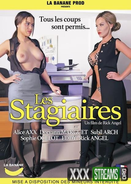 Les Stagiaires (2017/WEBRip/HD)