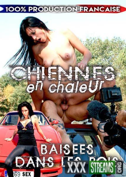 Chiennes En Chaleur Baisees Dans Les Bois (2015/WEBRip/SD)