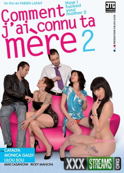 Comment Jai Connu Ta Mere 2 (2013/WEBRip/SD)