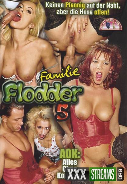 Familie Flodder 5 (2006/DVDRip)