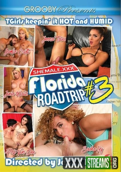 Florida Roadtrip 3 (2016/WEBRip/HD)