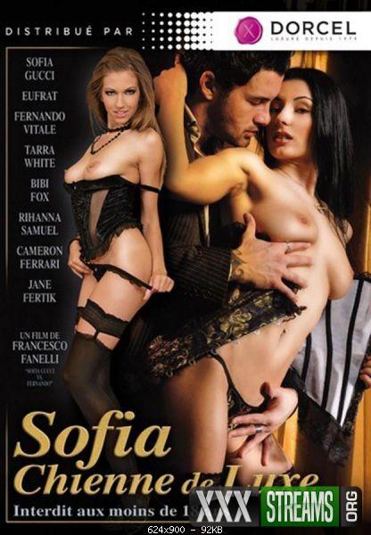 Sofia Chienne De Luxe
