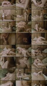 Noivas Delícia (1971DVDRip) de pré-Visualização