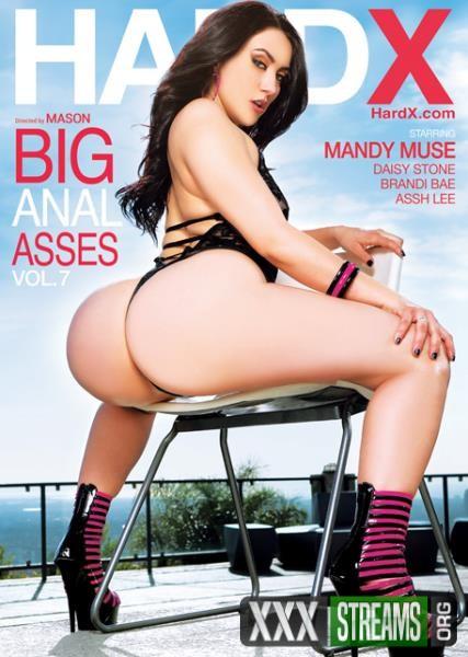 Big Anal Asses 7 (2018/WEBRip/SD)