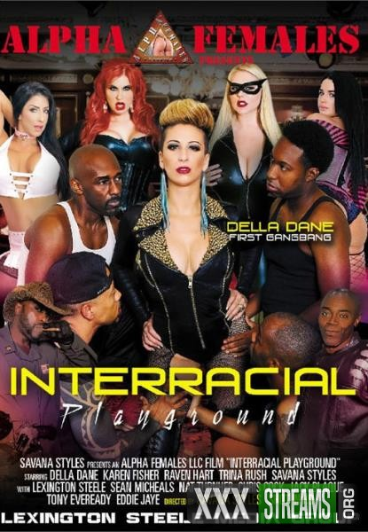 Interracial Playground (2018/WEBRip/SD)