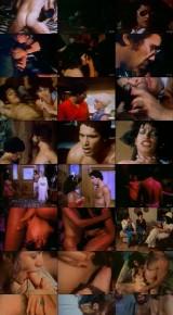 Swedish Erotica 88 - Vanessa Del Rio (1985DVDRip) Preview