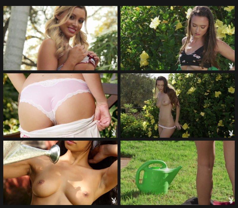 playboyplus.18.04.08.mashup.garden.girls.vol.1_cover.jpg