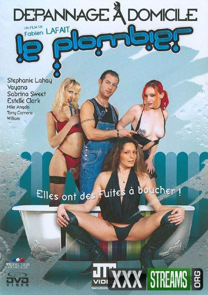 Depannage A Domicile - Le Plombier (2007/DVDRip)