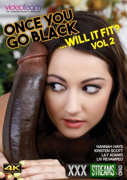 Once You Go Black – Will It Fit 2 (2018/WEBRip/HD)