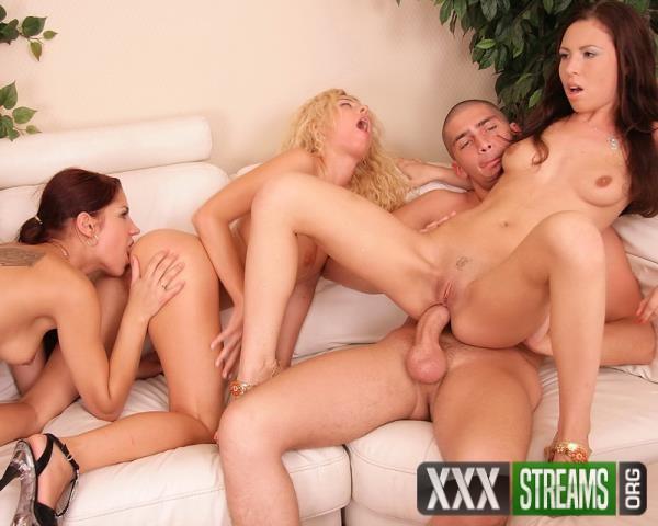 anal party orgies