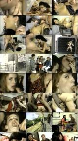 Anal Vision 11 (1993/DVDRip)