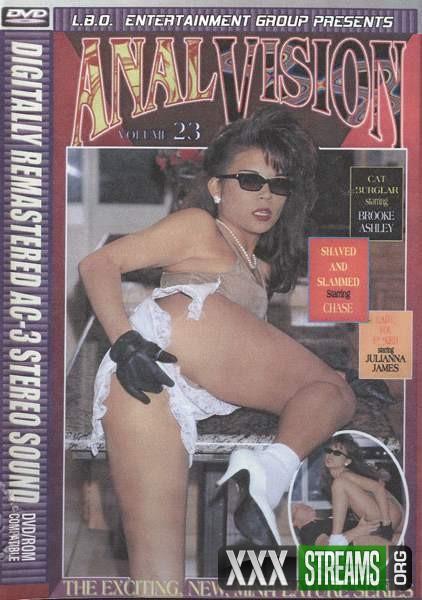 Anal Vision 23 (1994/DVDRip)