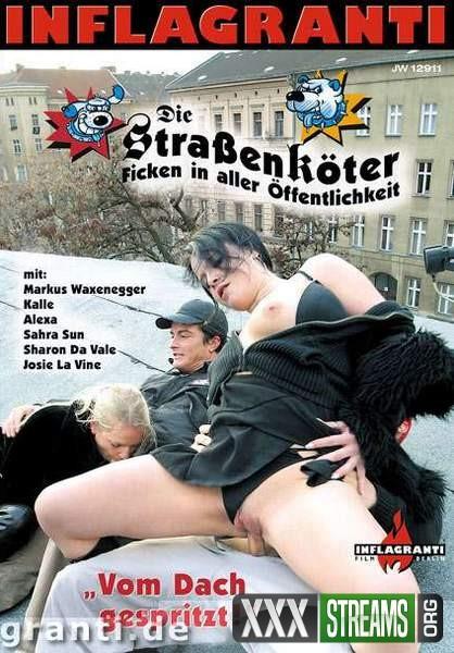 Die Strassenkoter – Vom Dach gespritzt (2005/DVDRip)