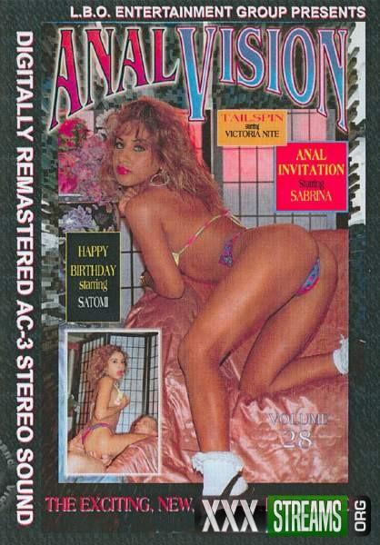 Anal Vision 28 (1994/DVDRip)