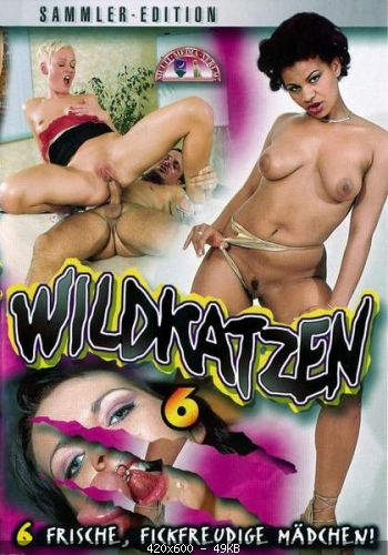 Wildkatzen 6 (2002/DVDRip)