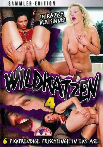 Wildkatzen 4